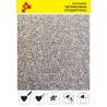 453A Pearl Mehrfarbene (Blattfolie) Flex Bügelfolie / POLI-FLEX PREMIUM