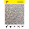 453A Pearl Multicolour (Sheet) thermal transfer film / Poli-flex
