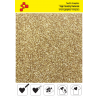 425A Helle Gold Glitter (Blatt) Flex Bügelfolie / POLI-FLEX