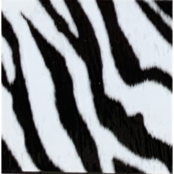 Fantasy Flex Zebra 10 termal transfer film / SEF Textile